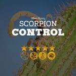 Scorpion Control in Mesa, AZ